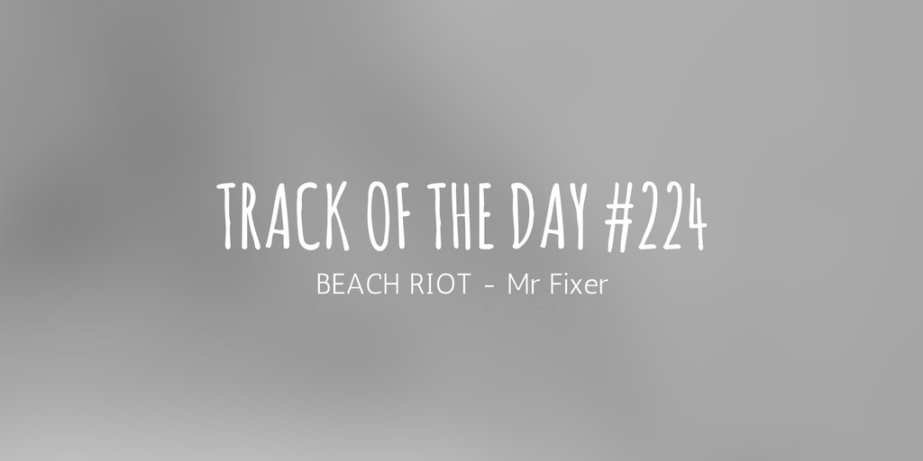 beach riot mr fixer mix it all up