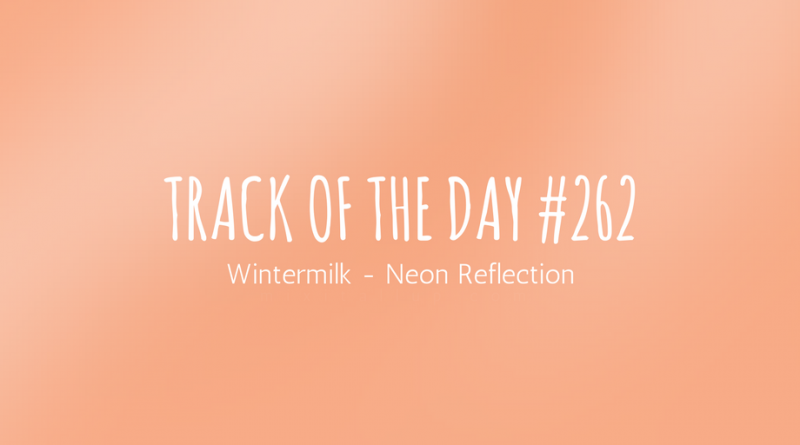 Wintermilk - Neon Reflection