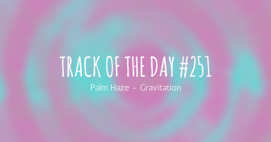 Palm Haze - Gravitation