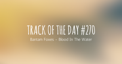 bantam foxes - blood in the water