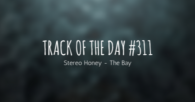 Stereo Honey - The Bay