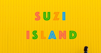 Suzi Island - Show Me The Way