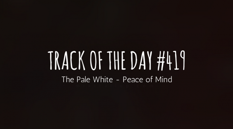 The Pale White - Peace of Mind