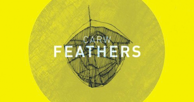 Carw - Feathers