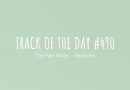 Track of the day #490: The Pale White – Medicine
