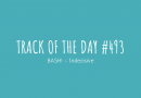 Track of the day #493: BASH! – Indecisive