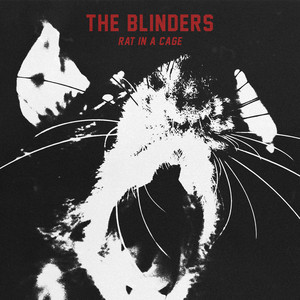 The Blinders - Rat In A Cage | Mix It All Up