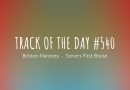 Track of the day #540: Briston Maroney – Steve's First Bruise