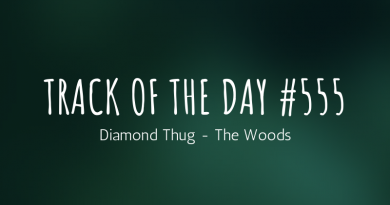 Diamond Thug - The Woods