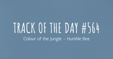 Colour of the Jungle - Humble Bee