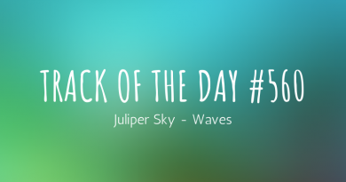 Juliper Sky - Waves