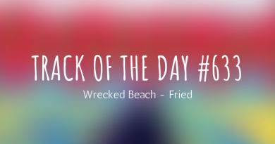 Wrecked Beach - Fried