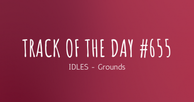 IDLES - Grounds