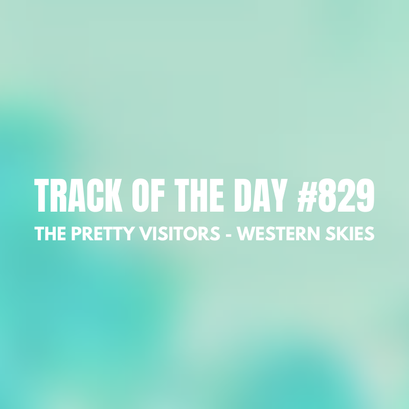 The Pretty Visitors - Western Skies