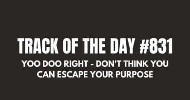 Yoo Doo Right - Don't Think You Can Escape Your Purpose